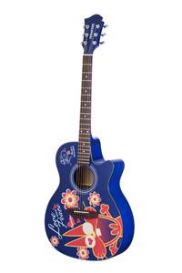 アコースティックギター(ニャロメ)
